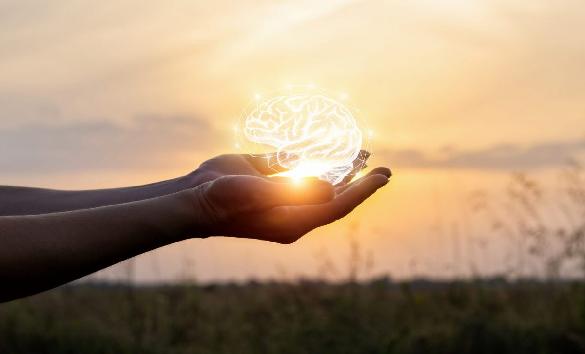 Hands support the brain in the sun . Concept brainstorming idea.