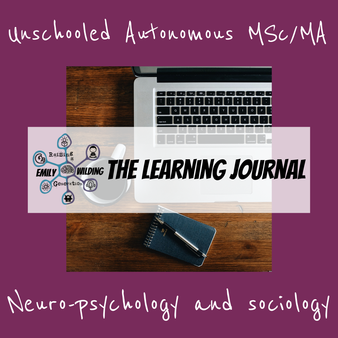 UA MSc_MA Lerning journal copy